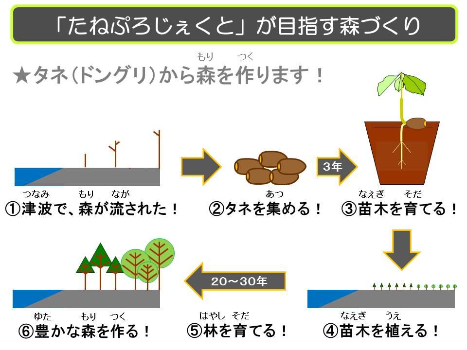 20130910 たねぷろじぇくと森づくり