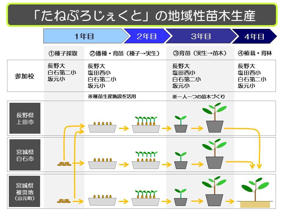 20130910 たねぷろじぇく地域性苗木生産