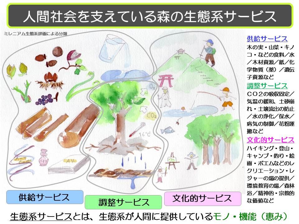20130912 たねぷろじぇくと生態系サービス
